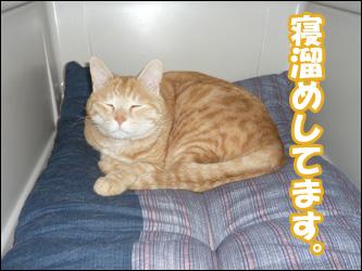 YUKI4_G.jpg