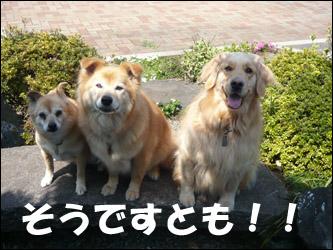 YUKI4_H.jpg