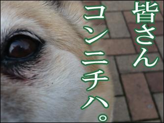YUKI5_A.jpg