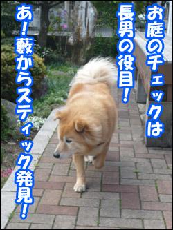 YUKI5_B.jpg