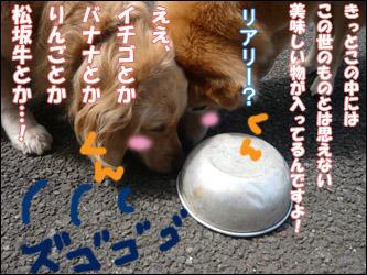 YUKI5_D.jpg