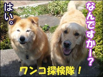 YUKI5_E.jpg