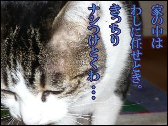 YUKI5_G.jpg
