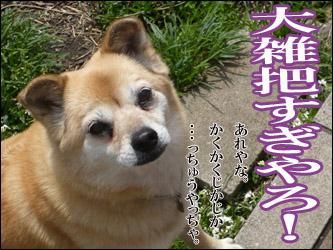 YUKI6_B.jpg