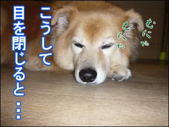 YUKI6_D.jpg