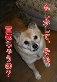 YUKI6_G.jpg