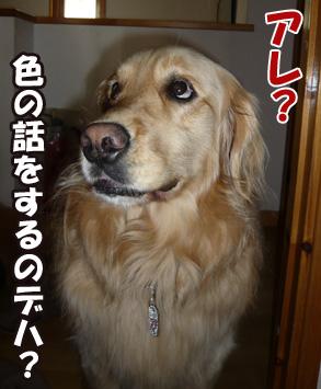 YUKI7_B.jpg