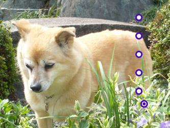 YUKI7_F.jpg