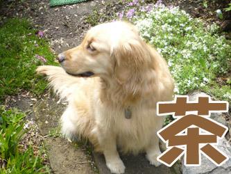 YUKI8_D.jpg