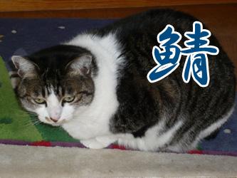 YUKI8_F.jpg