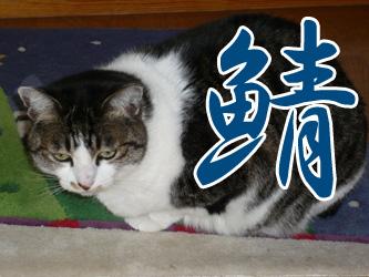 YUKI8_G.jpg