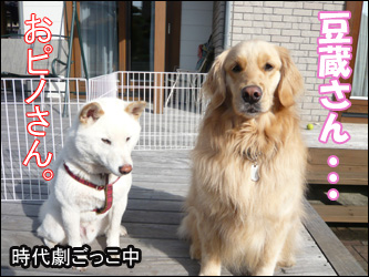 YUKI9_A.jpg