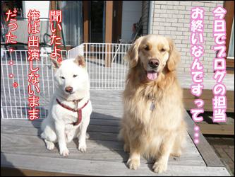 YUKI9_B.jpg