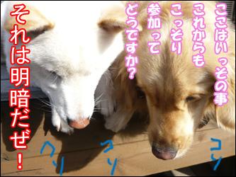 YUKI9_E.jpg
