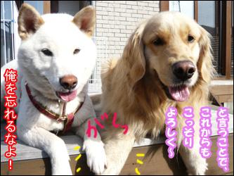 YUKI9_F.jpg