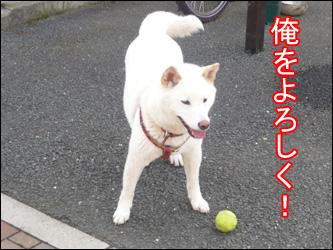 YUKI9_G.jpg