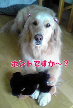 YUKI_A.jpg