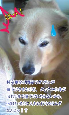 YUKI_B.jpg