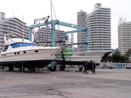2009dogjunmaru2.jpg