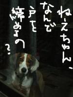 20071226_3.jpg