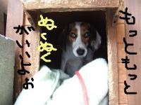 20071227_7.jpg