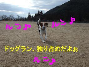 20080219_1.jpg
