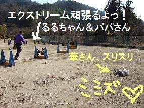 20080309_4.jpg