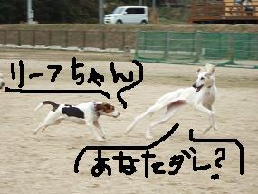 20080322_6.jpg