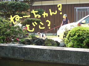20080428_2.jpg