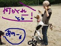 20080531_7.jpg