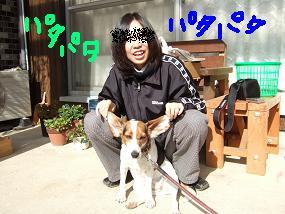 20081129_1.jpg