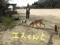 20081219_3.jpg