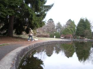 岩大農学部の池