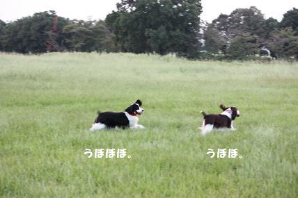 IMG_2906blog.jpg