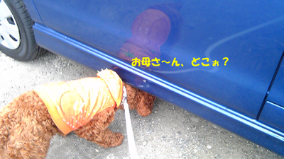 Image083.jpg