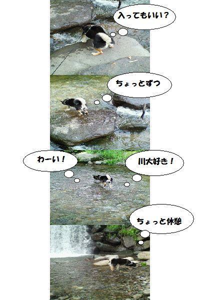 image6070510.jpg