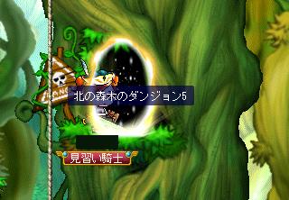 木の森の木のダンジョン