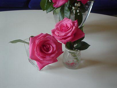 flower00.jpg