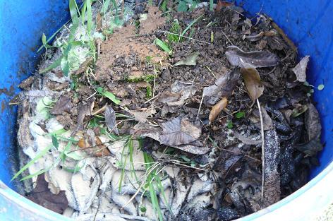何年ものの堆肥?