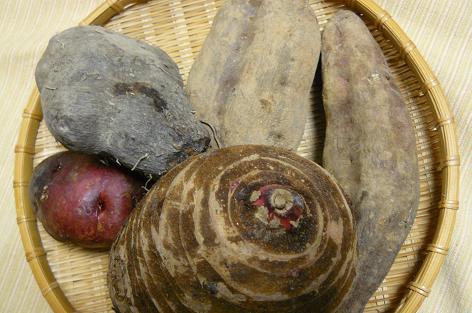 5種類の芋