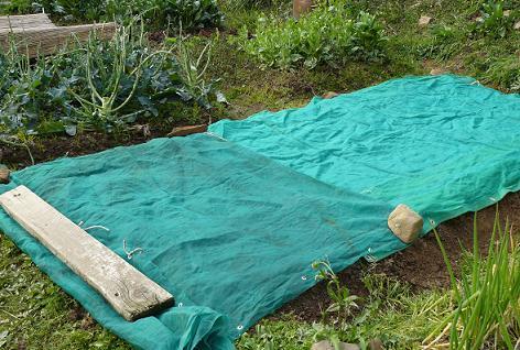 乾燥と種の流出防止