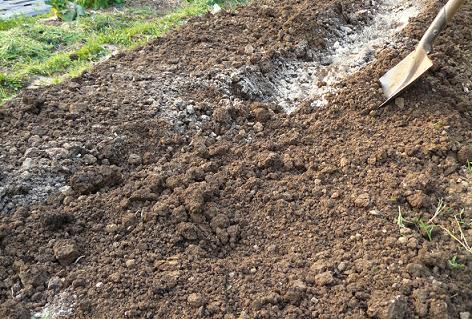 土を被せて完了