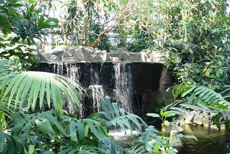 熱帯生態園