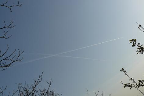 青い空と飛行機雲♪