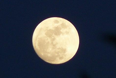 今夜は満月♪