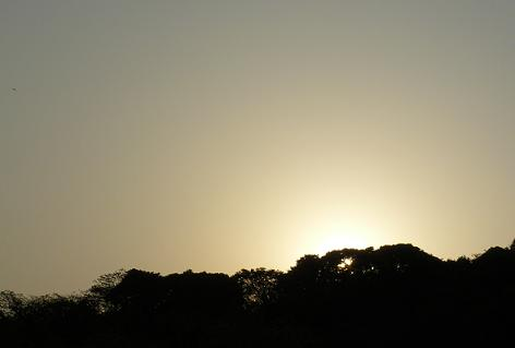 日が傾いて・・・