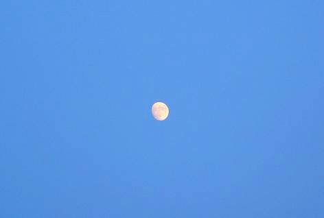月が昇った♪