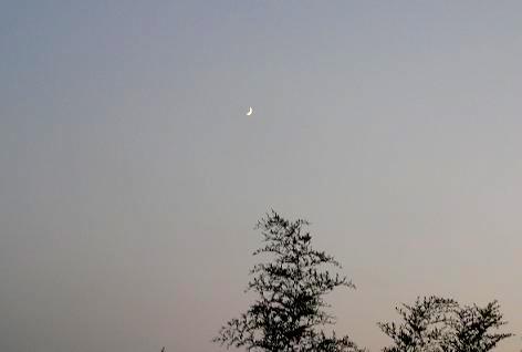 月が輝きだして・・