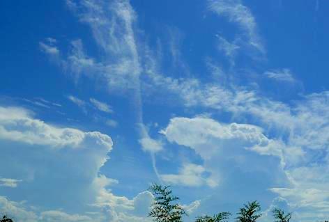 雲が色々♪