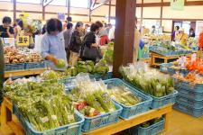 新鮮な野菜がいっぱい♪